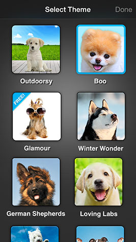 Weather Puppy Screenshot 4
